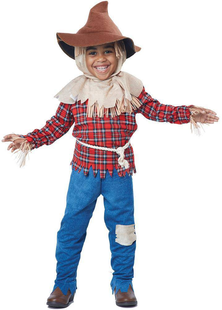California Costumes Harvest Time Scarecrow Theme Child Costume - Costume Arena