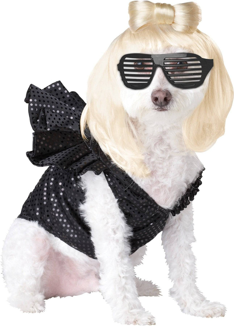 California Costumes Pop Sensation Rock Star Movie Dog Costume - Costume Arena