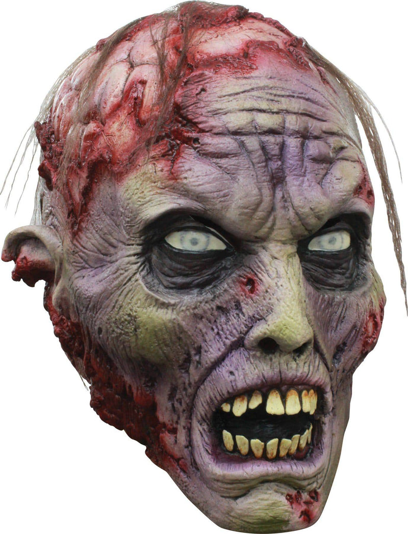 Ghoulish Productions Brains Scary Theme Halloween Latex Mask - Costume Arena