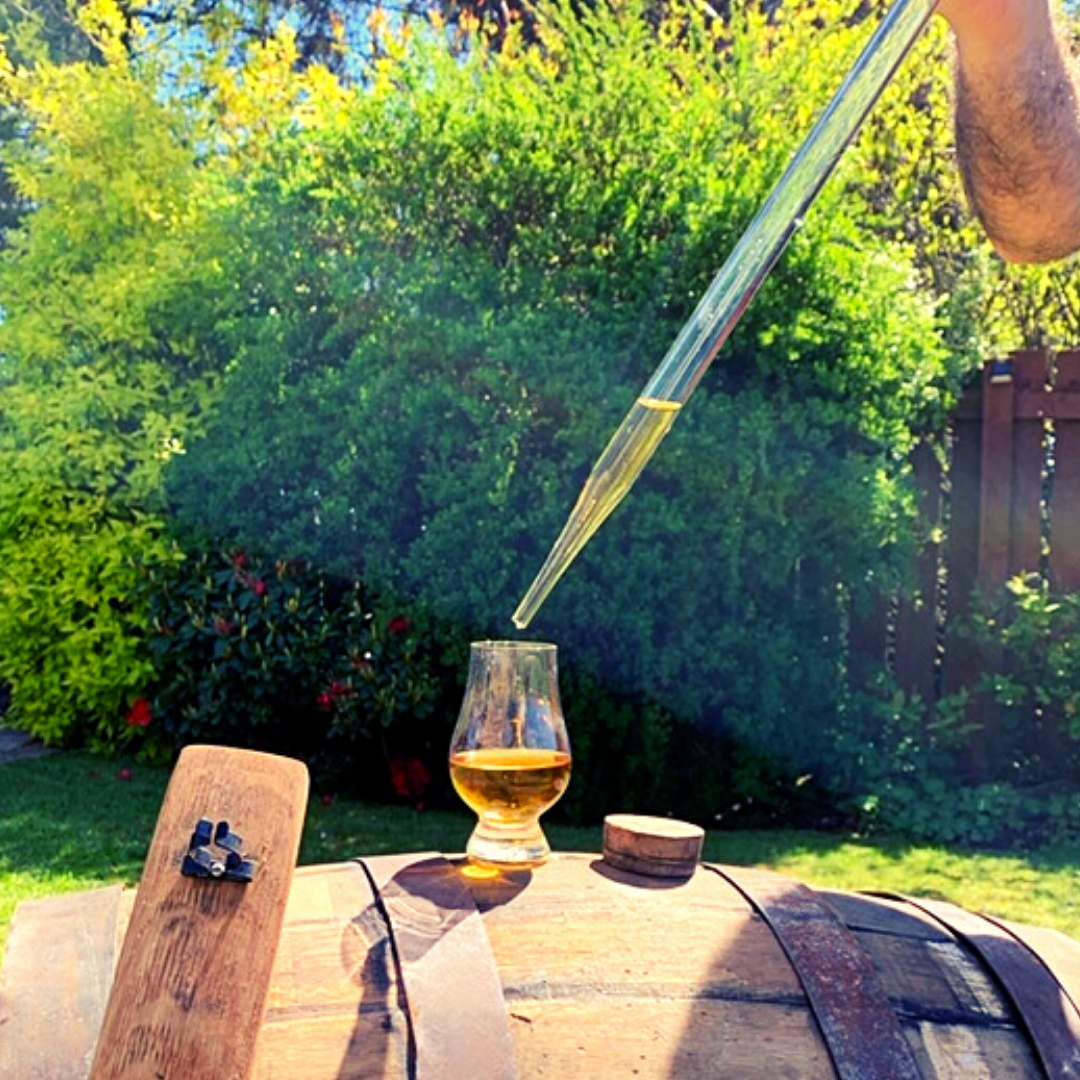 Whisky Valinch with Oak Stave