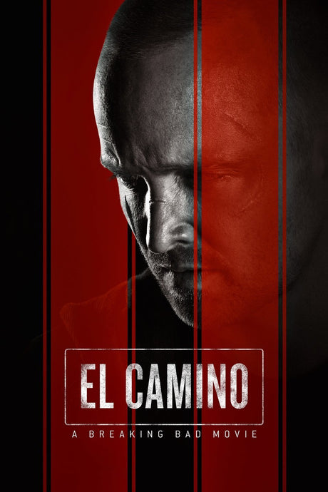El Camino: A Breaking Bad Movie Uses Timelapse+ VIEW
