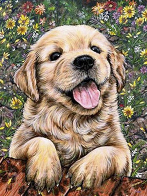 Diamond Painting, Hundewelpe Golden Retriever, 5D Diamant Malerei Bild, Set mit Zubehör