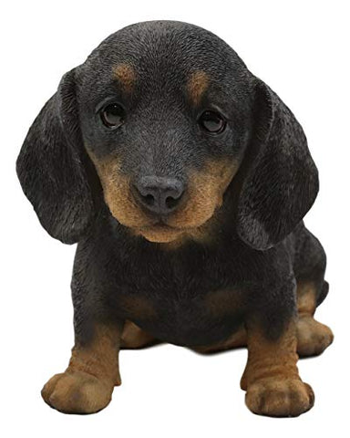 "Ebros Realistic Adorable Black and Tan Dachshund Puppy Dog Statue 8"" Long Schnitzel Sausage Wiener Dog Figurine Pet Pal Gallery Quality Sculpture with Glass Eyes"