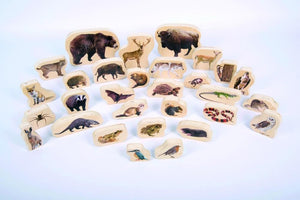 Forest Animal Wooden Pack of 30 Blocks - Daily Mind