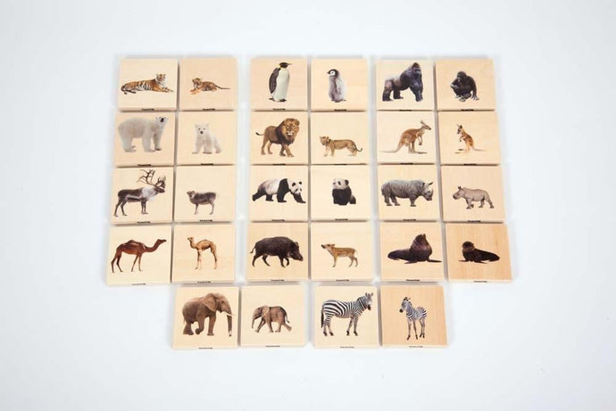 Wild Animal Family Match- Wooden Pack of 28 Blocks - Daily Mind