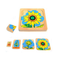Life Cycle of Sunflower Wooden Puzzle - Daily Mind