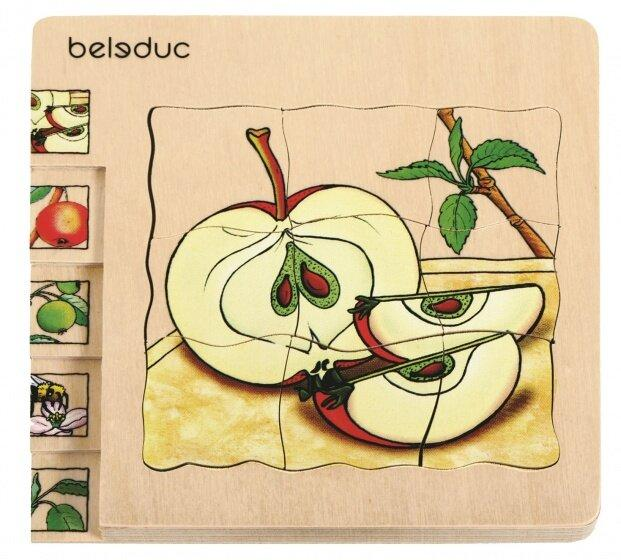 Apple Wooden Puzzle 30 Pieces 1 in 5 Layers - Daily Mind
