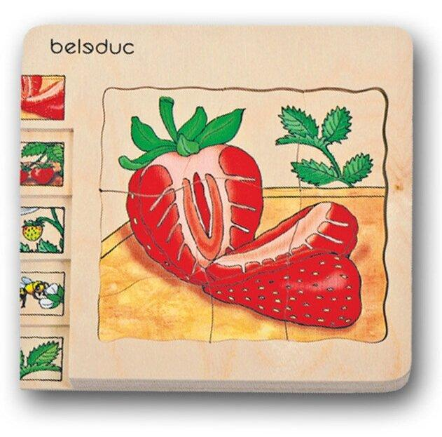 Strawberry Wooden Puzzle 30 Pieces 1 in 5 Layer - Daily Mind