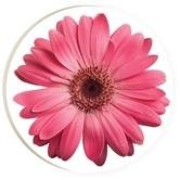 PGD Daisy Car Coaster