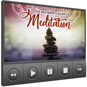 Beginners Guide to Mediation