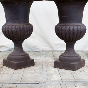 French Cast Iron Planters, Pair, G022