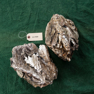 Mica Formation, 2 pcs, G251