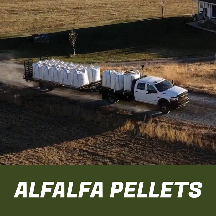 Truck pulling a trailer full of super sacks of premium horse feed pellets on a dirt road by a field.