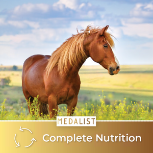 Complete Nutrition: Our quality horse feed brings all of the nutritious values your horse needs. It helps your horse stay as healthy as a horse.