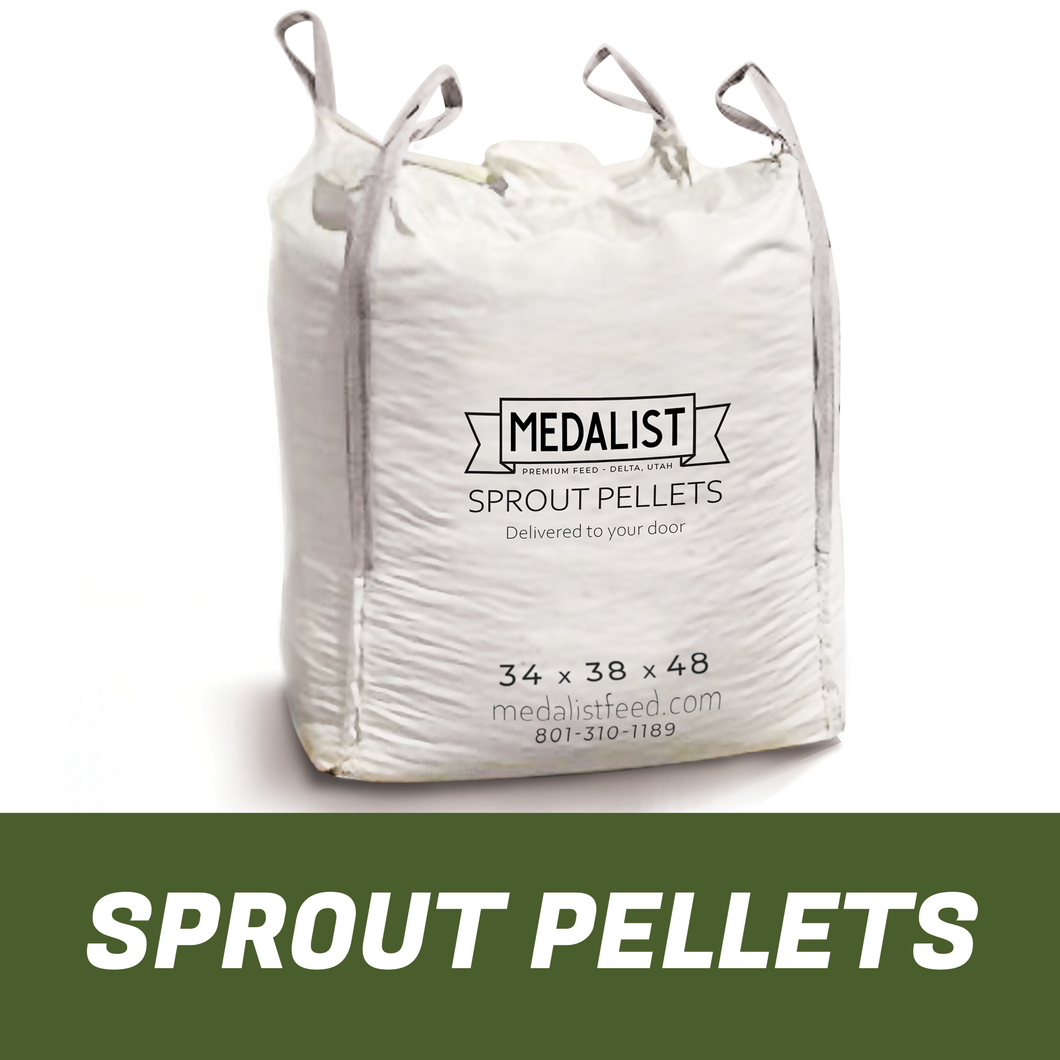 Large bulk bag of nutritious Sprout Pellet horse feed on white background. Bag size 34 x 38 x 48.