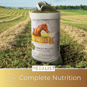 Sprout pellet bag with a horse feed scoop in a field of alfalfa. Complete nutrition: Our high quality sprout blend helps bring all of the nutrition your horse needs.