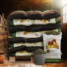 Load image into Gallery viewer, stack of  horse feed in barn. Our pellet bags can be easily transported and stored. These are a great space saver since all of the feed is in a cube that doesn't take up as much space as the same about of bails of alfalfa contained in our bags.