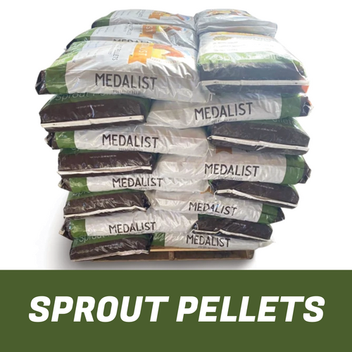 Large stack of nutritious sprout pellets made from a blend that of consists of barley sprouts, alfalfa, oat hay, and Timothy Grass. 20 50 pound bags of horse feed come on a pallet.