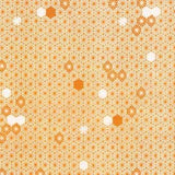 Highlands - The Geometry of Bees in Apricot