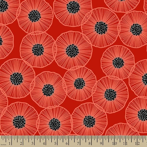 Poppies in Bloom: Main Poppy Red