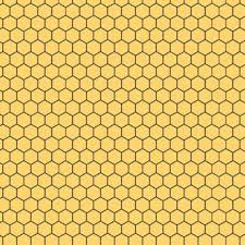 Honeycomb in Honey