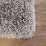 Jaipur Living Seagrove Solid Light Gray Area Rug