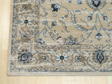 Beige Traditional Distressed Bohemian Isabella Rug