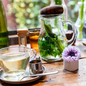 Tisane & Herbal Tea Picture, tea cup and Tea pot with herbal tea