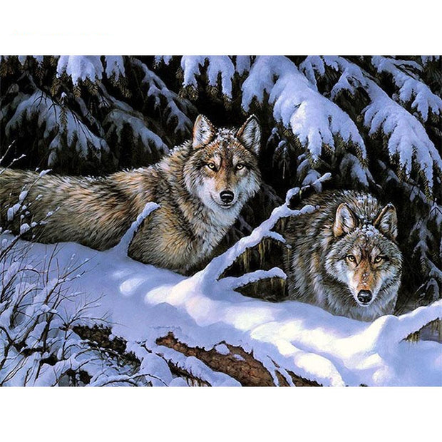 Snow Wolves Paint by Numbers Kit