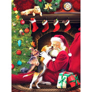 Christmas Santa with Pets Paint by Numbers