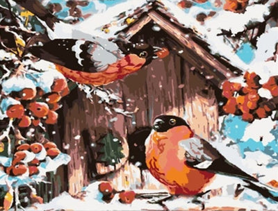 Bird House Paint by Numbers (40x50cm no frame)
