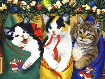 Cats In Christmas Stockings Paint by Numbers