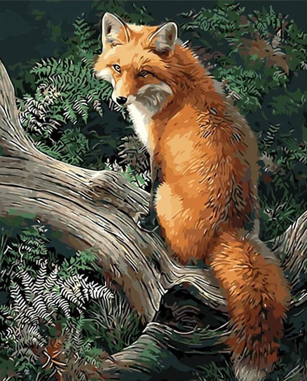Fox Paint by Numbers (40x50cm no frame)