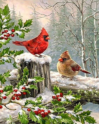 Winter Birds Paint By Numbers