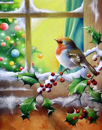 Winter Birds Xmas Paint by Numbers (40x50cm no frame)