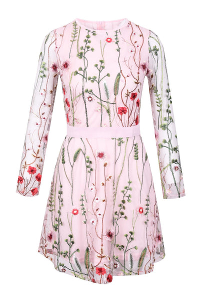 Floral Embroidery Mesh Dress (Blush) - LottiLove Dresses