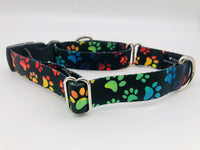 Service Dog Collar & Bringsel Black/Multicolored Paws Flat