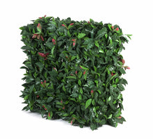 Load image into Gallery viewer, Portable UV Artificial Hedge Plant Photinia 75cm X 75cm
