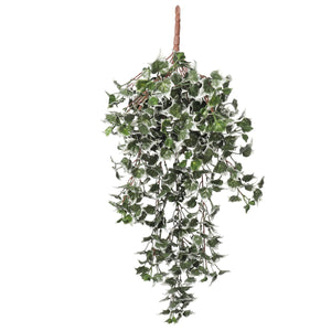 Mixed Green and White Tipped Ivy Bush 80cm UV Resistant