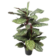 Load image into Gallery viewer, Artificial Wide Leaf Cordyline Plant 90cm