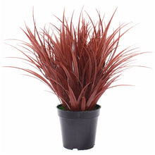 Load image into Gallery viewer, Artificial Ornamental Potted Dense Burgundy Grass 38 cm