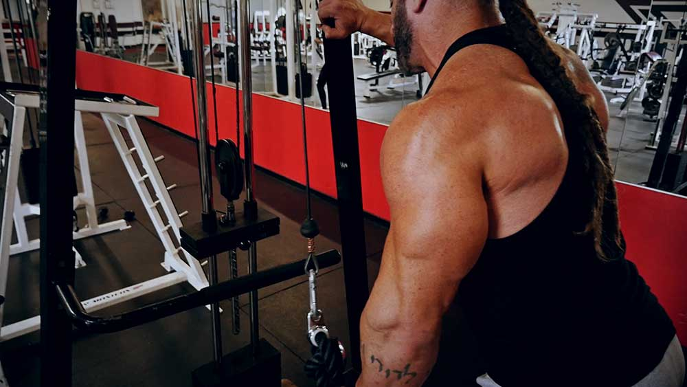 Arm-super-set-workout-Shawn-Lehner.00_11_41_12