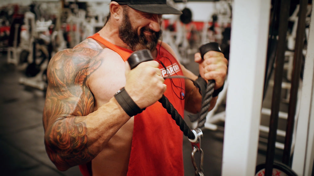Back and biceps workout hammer curl challenge