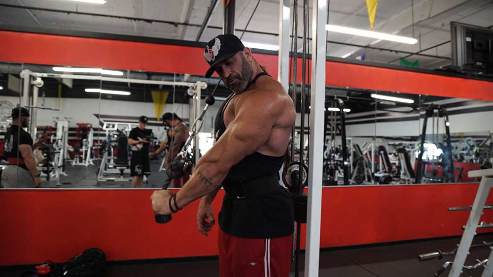 Triceps workout single arm rope extensions