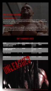 Unleashed Sample Chest Workout