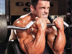 arm workouts routines
