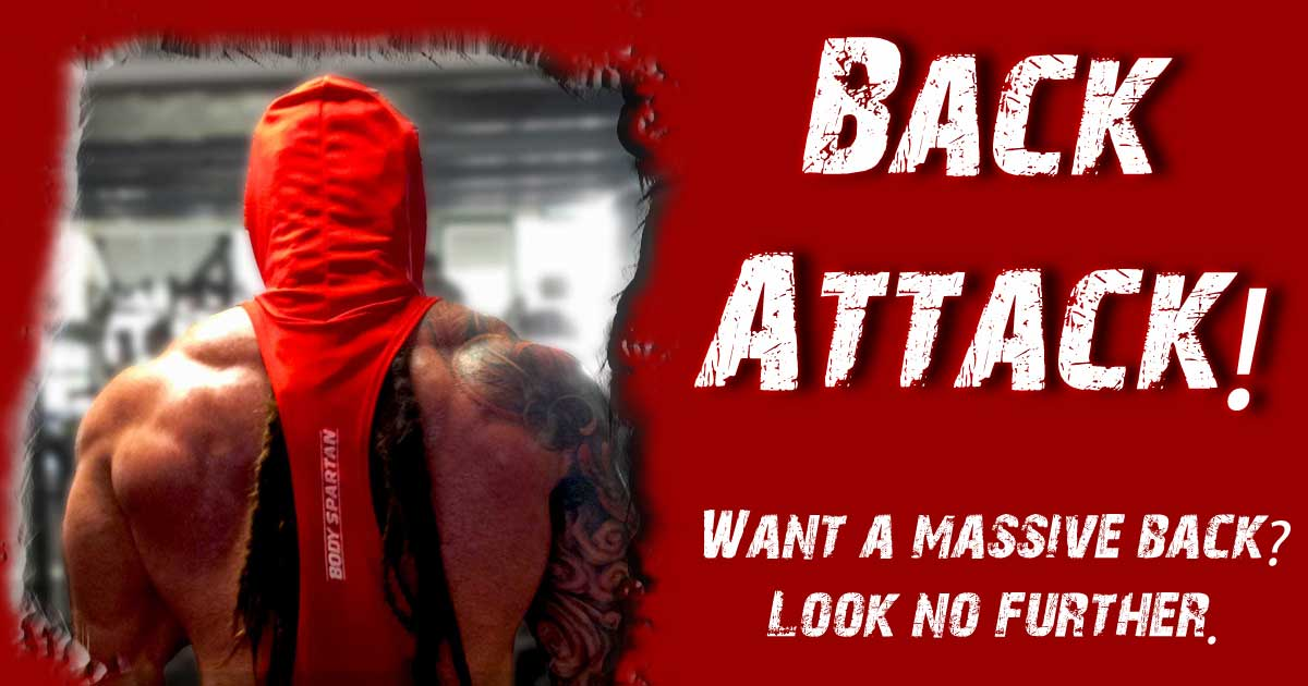 Back workouts with Body Spartan
