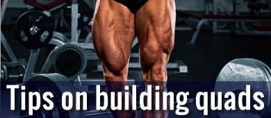 best leg workout