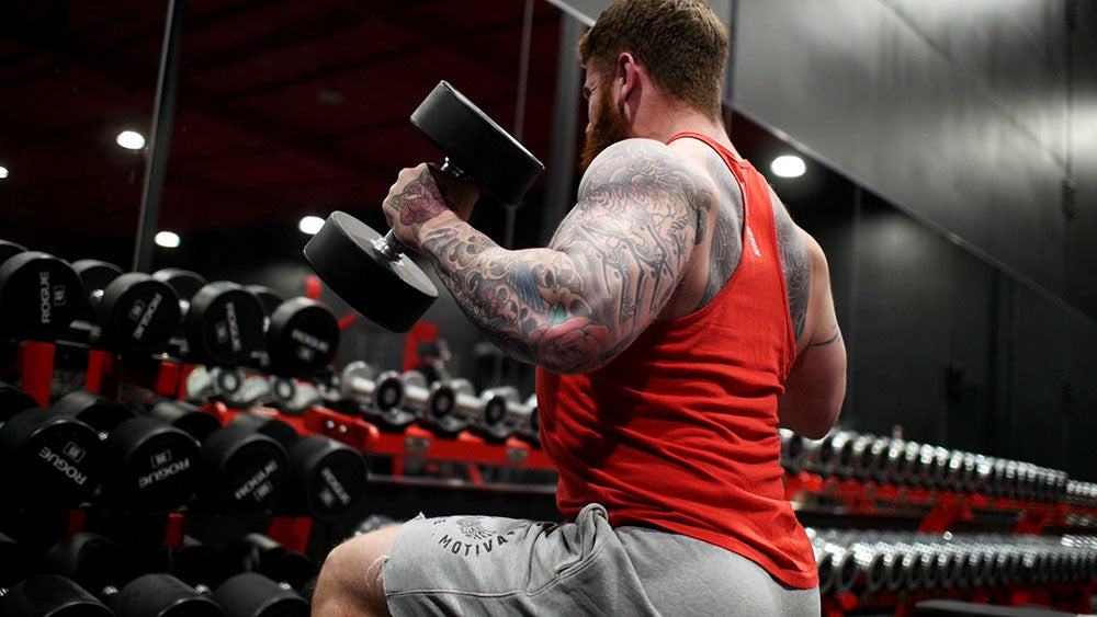 Hammer Curls Seated