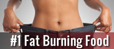 number one fat burning food